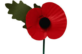 anyone wearing a poppy today