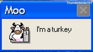 2014 canada thanksgiving microsoft sam reads funny windows errors canadian thanksgiving