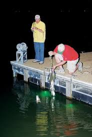 green lantern fishing light everything you need to know about night fishing lights