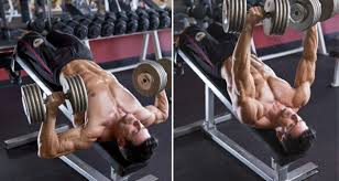decline bench press muscles how to do dumbbell decline bench press iron man magazine