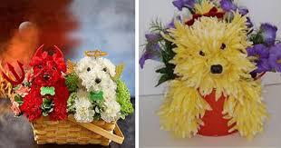 dog flower arrangement 17 beautiful flower arrangements for dog