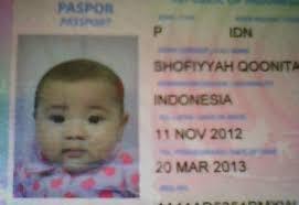 buat paspor online bayi pembuatan paspor bayi catatan harian qoonita