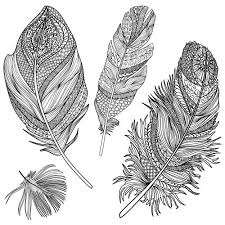 difficult intricate design coloring pages of feather