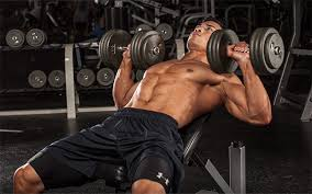 Dumbbell Exercises Chest No Bench - 4 ways to build a huge chest without flat barbell benching