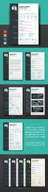 Good Resume Fonts For Engineers by Top 25 Best Example Of Cv Ideas On Pinterest Resume Ideas
