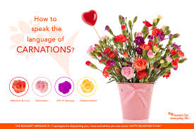 Meaning Of Color by Carnations For Valentine U0027s Day Learn Their Secret Language