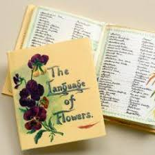 The Language Of Flowers Meaning Of Flowers Language Of Flowers Popular Bridal Flowers