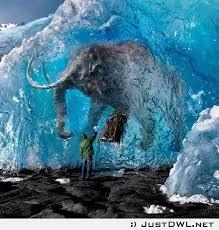 25 wooly mammoth clone ideas mammoth