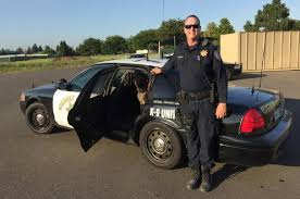 jobs in cars police k9 unit rod network