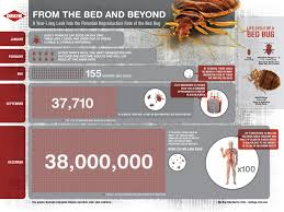 What Temperature Do Bed Bugs Die Bed Bug Environments What U0027s The Ideal Bed Bug Environment
