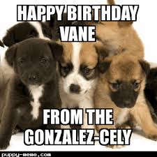 Vanessa Meme - birthday vanessa