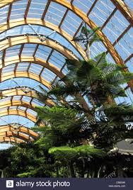 roof structure of sheffield winter garden south yorkshire england