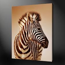 Lotr Home Decor Zebra Print And Pink Room Ideas On Interior Design With Hd Iranews