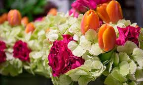 flowers miami more than flowers miami fl groupon