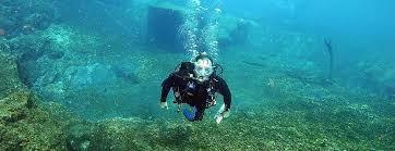 Louisiana snorkeling images Classes harry 39 s dive shop jpg