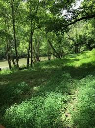 265 acres in tazewell tn frasier properties