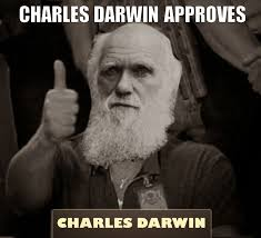 Approved Meme - idiot tested darwin approved album on imgur