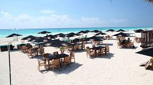 city express playa del carmen city express hotels