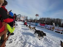 Willow Alaska Map by Iditarod Race Alaska Winter Tour Dogsledding Family Vacation