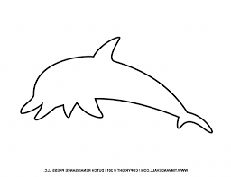 simple dolphin drawing drawing art gallery