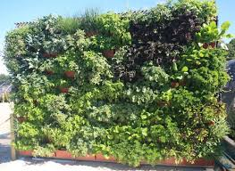 vertical herb garden u2022 nifty homestead