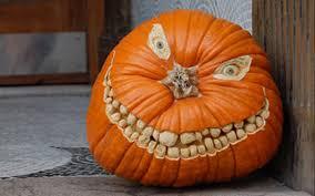 cute halloween pumpkin decorations creative ads and more u2026 home