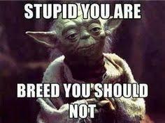 Star Wars Birthday Memes - alien buddhism alien buddhism pinterest