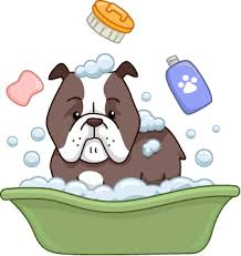Make Bathtime Fun For Your Dog The Ultimate Guide To Dog Cleaning And Grooming