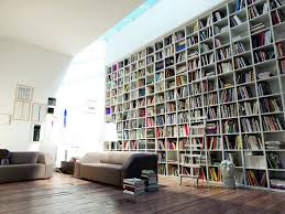 modern and luxury home living room with spacious book shelves also