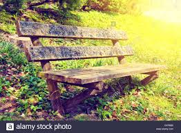 old bench in the park at summer vintage retro colors picture