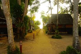 snap out of it live freesnapshot of koh lanta thailand ultimate