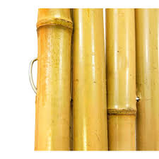 outdoor great bamboo fence roll for home fence idea