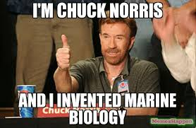 Who Invented Memes - i m chuck norris and i invented marine biology meme chuck norris