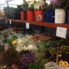 florist alexandria va middle atlantic wholesale florist 16 reviews florists 4406