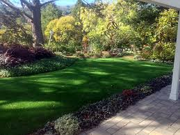 Lawn Free Backyard Artificial Lawn Wayne Michigan Landscape Design Backyard Designs