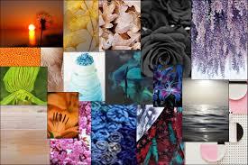 color trends for 2017 u2013 rajwadi u2013 medium