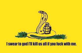 Flag Meme - the best gadsden flag memes romano law