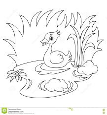 duck in the river black and white coloring page stock vector