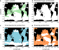 why marine phytoplankton calcify science advances