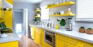 Yellow And Green Kitchen Ideas Yellow Kitchen Ideas View In Gallery Yellow Green Kitchen Decor