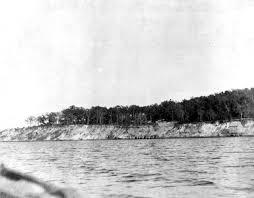 Battle of St. Johns Bluff