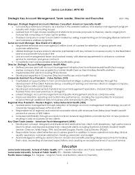 Account Executive Job Description Resume by Strategic Key Account Management Resume 4 7 2011