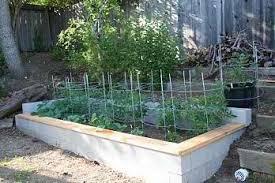 raised garden beds marin homestead