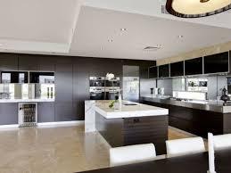 kitchen cabinets singapore cabinet attractive modern kitchen cabinets boston ma splendid