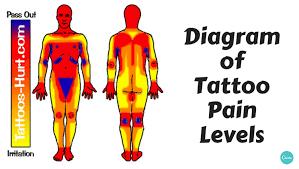 tattoo pain level chart female diagram of tattoo pain hotspots chart alltop viral
