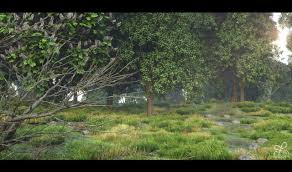 forest render realistic forest environment cg lycodonfx portfolio