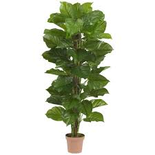 philodendron nearly natural real touch 63 in h green large leaf philodendron