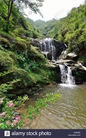 Rock Garden Darjeeling Waterfall At Rock Garden Darjeeling West Bengal India Stock