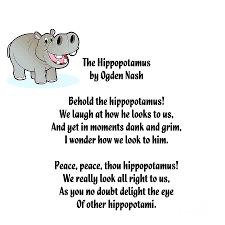hippopotamus limerick digital art by spencer mckain