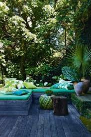 Tropical Plants Pictures - tropical plants indoors design pictures remodel decor and ideas